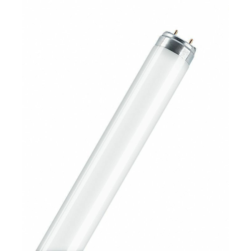 Luminofoorlamp T8 L18W/840, 590mm, Osram
