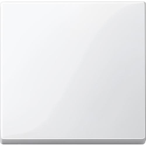 Klahv (6) polaarvalge Sys M Merten