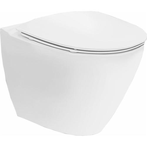 Seina WC Inspira Art rimfree, valge