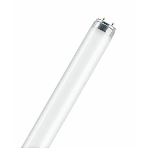 Luminofoorlamp T8 L36W/830, 1200mm, Osram