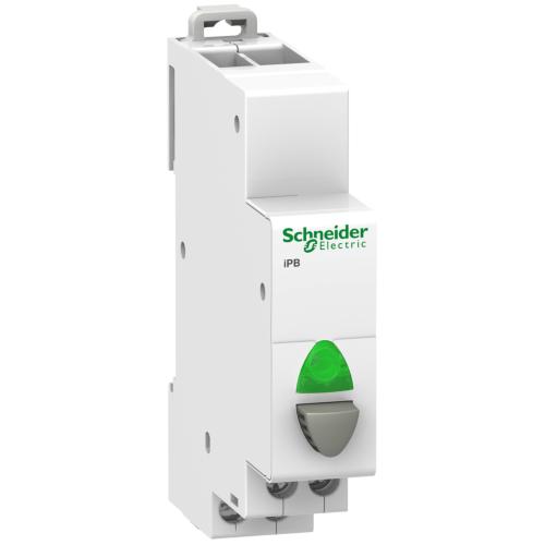 Kaitselüliti 1P roheline märgutuli 20A 110-230V